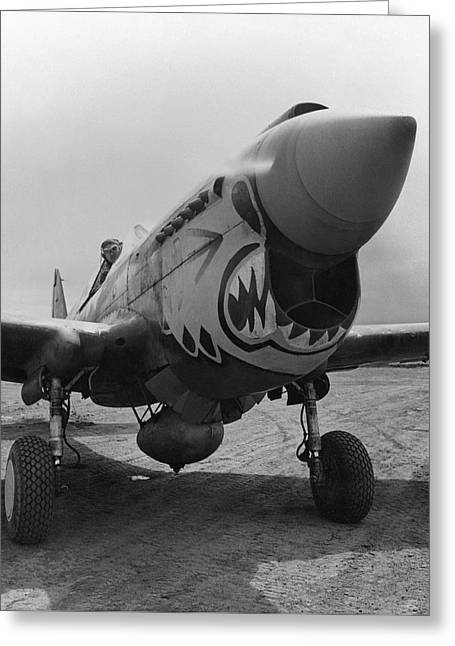 Army Photographs Greeting Cards - P-40 Warhawk - Flying Tiger Greeting Card by War Is Hell Store