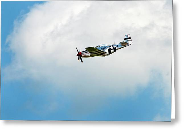 P-51D Mustang Greeting Card by Murray Bloom