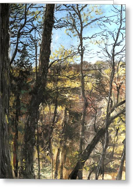 Pa Pastels Greeting Cards - Pa woods Greeting Card by Mark Gardner