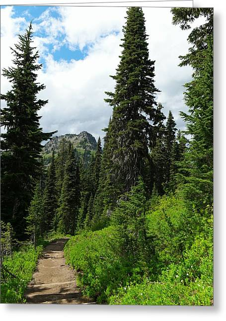 Pacific Crest Trail Greeting Cards - Pacific Crest Trail towards American Ridge Greeting Card by Jeff  Swan