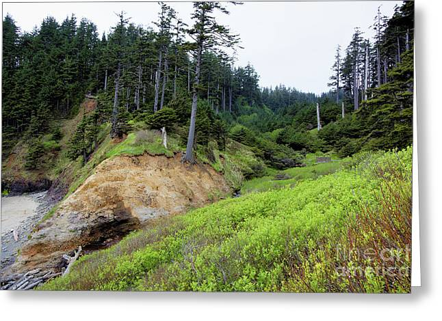 Pacific Overlook Greeting Card by Jon Burch Photography