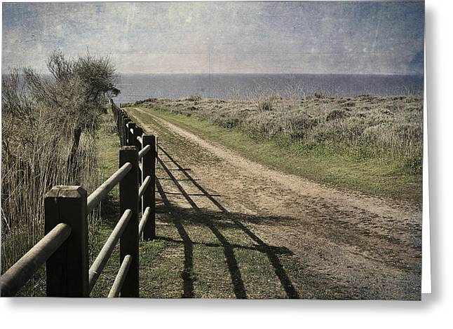 Palos Verdes Cove Greeting Cards - Pacific Path Greeting Card by Kevin Bergen