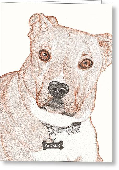 Puppies Drawings Greeting Cards - Packer Greeting Card by Marie Wern