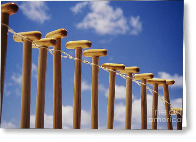 Paddles Hanging In A Row Greeting Card by Joss - Printscapes