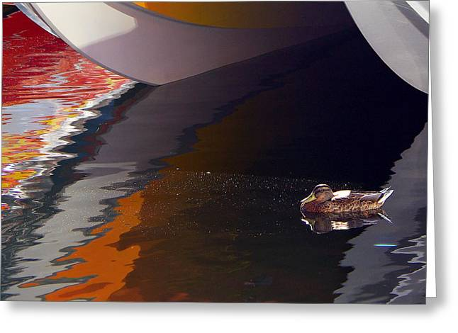 Poker Run Boat Greeting Cards - Paddling Among the Colours Greeting Card by Paul Wash