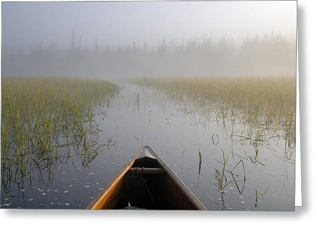 Paddling Into The Fog Greeting Card by Larry Ricker