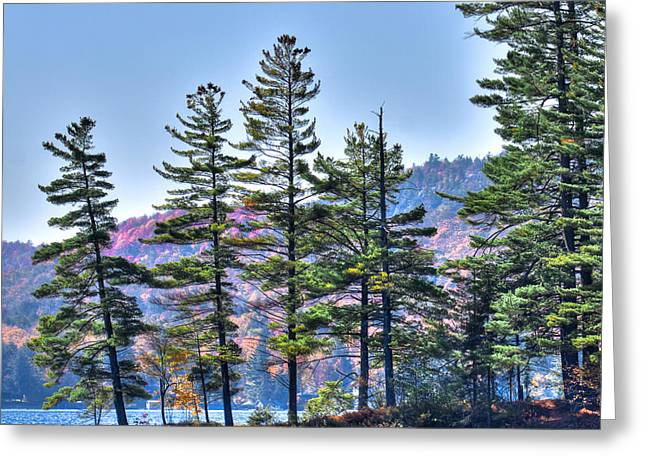 Canoe Photographs Greeting Cards - Paddling the Fulton Chain of Lakes Greeting Card by David Patterson
