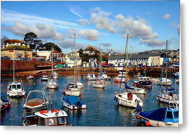 Fishing Boats Greeting Cards - Paignton Harbor Greeting Card by Anthony Dezenzio