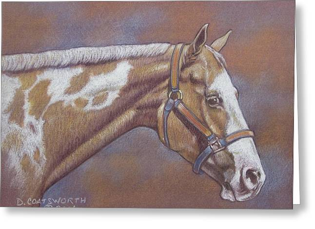 Dorothy Coatsworth Greeting Cards - Paint Horse Greeting Card by Dorothy Coatsworth