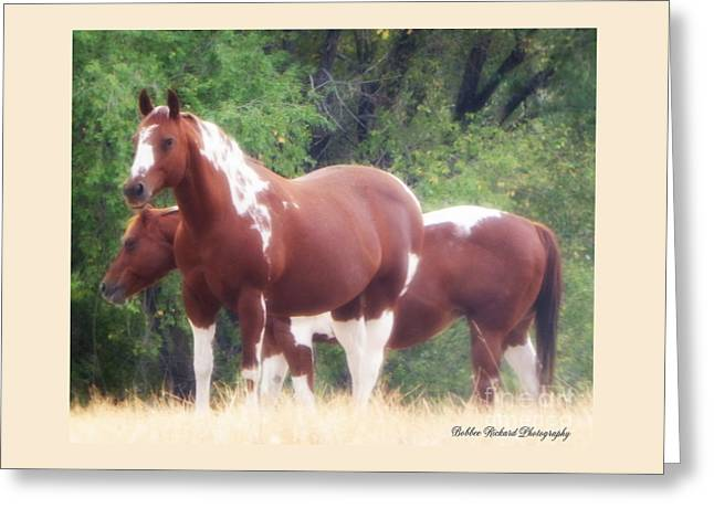 Pairs Greeting Cards - Paint Horses  Greeting Card by Bobbee Rickard