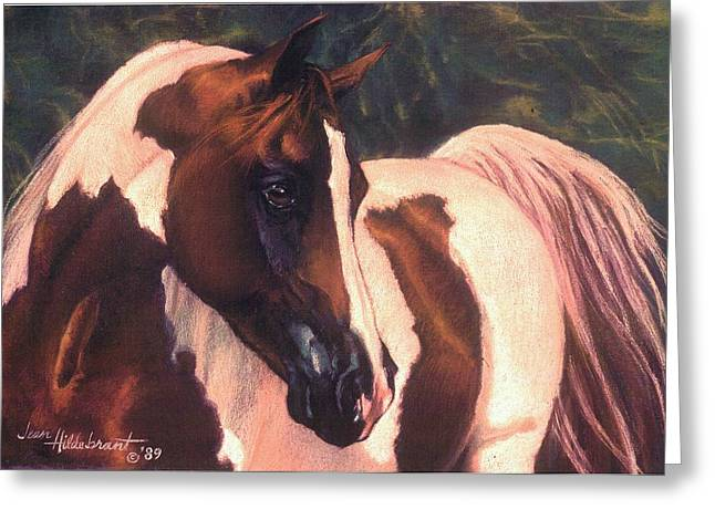 Pony Pastels Greeting Cards - Paint Greeting Card by Jean Hildebrant
