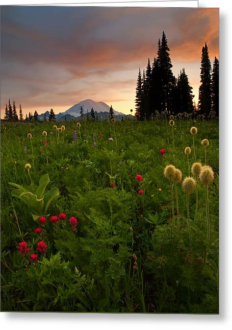 Paintbrush Sunset Greeting Card by Mike  Dawson