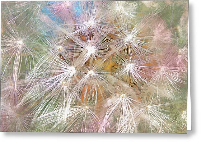 Layers Greeting Cards - Painted Dandelions Greeting Card by Hal Halli