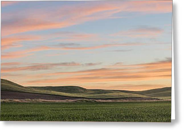 Botanical Greeting Cards - Painted Farmland Greeting Card by Jon Glaser