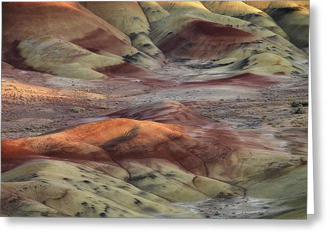 Ashes Greeting Cards - Painted Hills Color and Texture Greeting Card by Leland D Howard