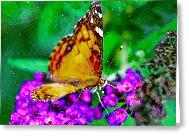 Creepy Digital Greeting Cards - Painted Lady Butterfly 3 Greeting Card by Geraldine Scull