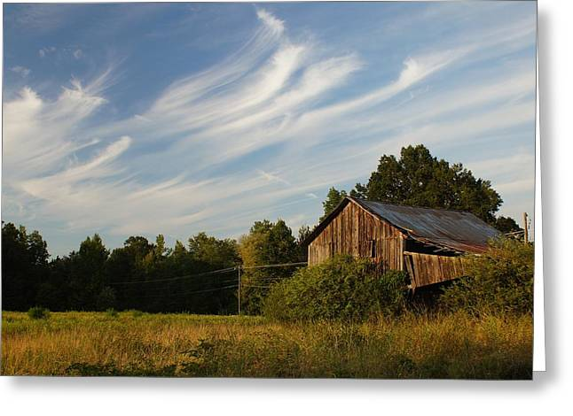 Tobacco Barns Greeting Cards - Painted Sky Barn Greeting Card by Benanne Stiens