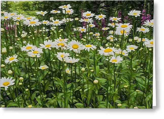 Patch Greeting Cards - Painterly Daisy Patch Greeting Card by Gary Slawsky
