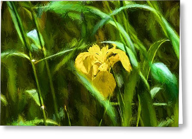 Close Focus Floral Greeting Cards - Painterly gree frame Greeting Card by Leif Sohlman