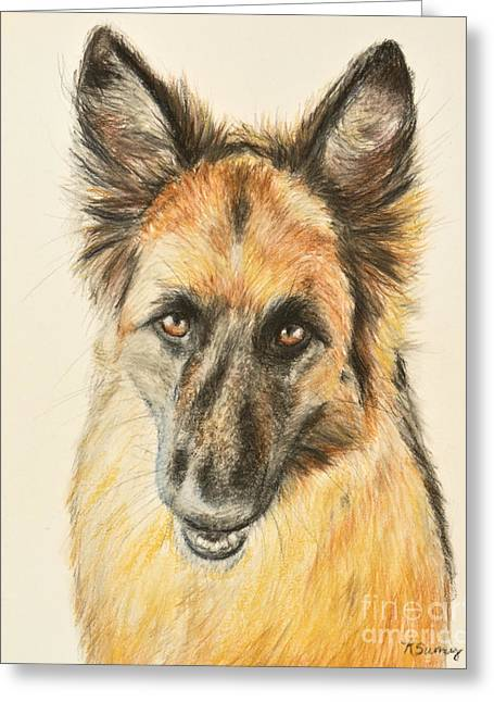 Police Pastels Greeting Cards - Painting of a German Shepherd Greeting Card by Kate Sumners