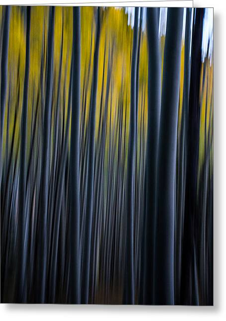 Painting The Aspens Greeting Card by Bill Cantey