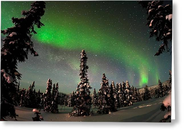 Best Sellers -  - Snowy Night Greeting Cards - Painting The Sky With The Northern Lights Greeting Card by Mike Berenson