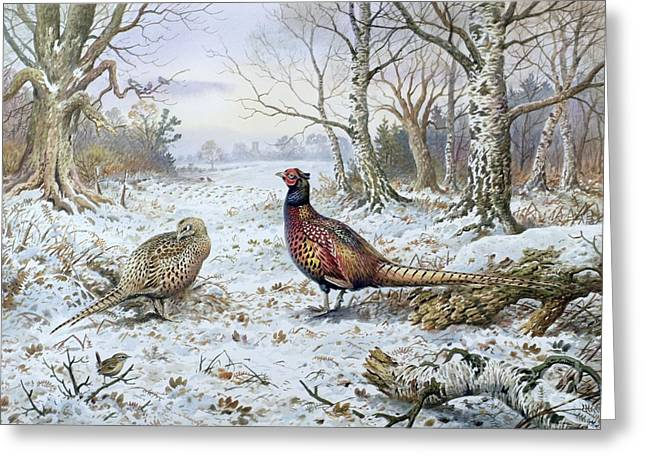 Pair Of Pheasants With A Wren Greeting Card by Carl Donner