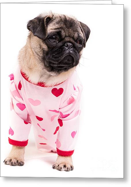 Pajamas Greeting Cards - Pajama Party Greeting Card by Edward Fielding