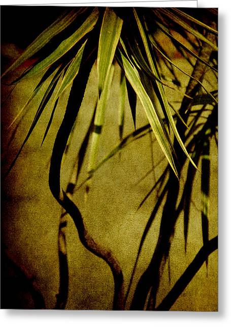Palm Fronds Are Green Greeting Card by Susanne Van Hulst
