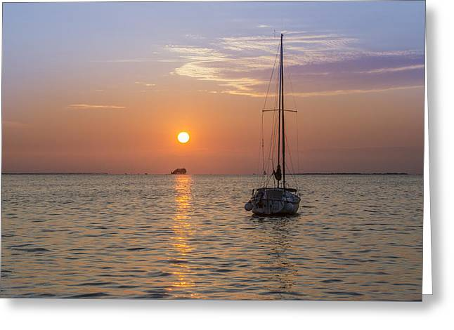 Palm Harbor Has The Best Sunsets Greeting Card by Bill Cannon