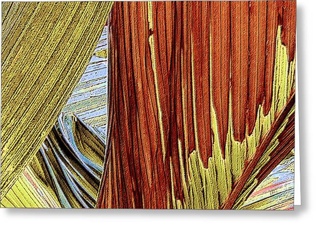 Red Abstracts Greeting Cards - Palm Leaf Abstract Greeting Card by Ben and Raisa Gertsberg