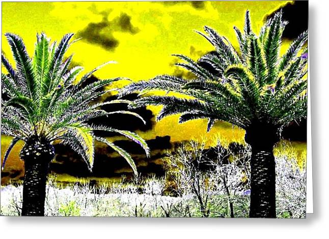 Napa Valley Digital Greeting Cards - Palm Paradise   Greeting Card by Will Borden
