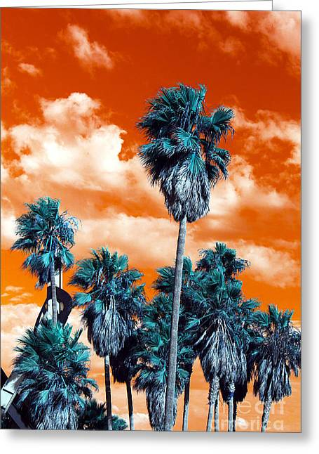Venice Beach Palms Greeting Cards - Palm Pop Art Greeting Card by John Rizzuto