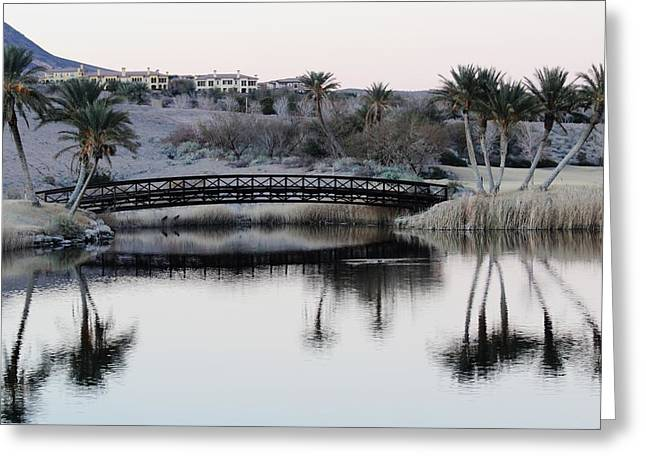Reflecting Water Greeting Cards - Palm Reflections Greeting Card by Fiona Liger