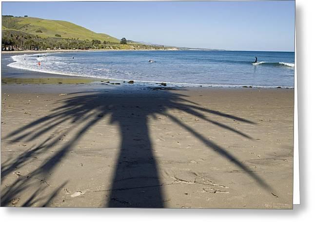 Gaviota Greeting Cards - Palm Shadows On The Beach Greeting Card by Rich Reid