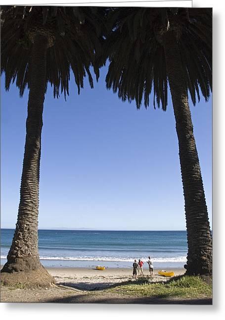 Gaviota Greeting Cards - Palm Trees Frame Three People Greeting Card by Rich Reid