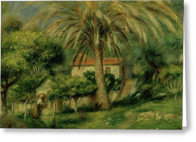 Palm Trees Greeting Card by Pierre Auguste Renoir