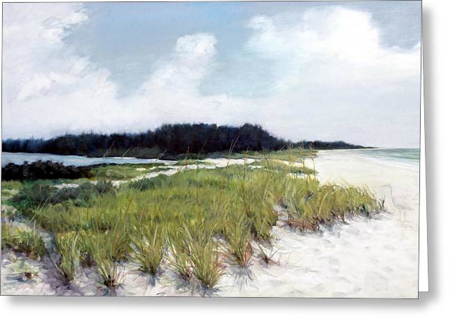 Palmer Greeting Cards - Palmer Point Greeting Card by Shawn McLoughlin