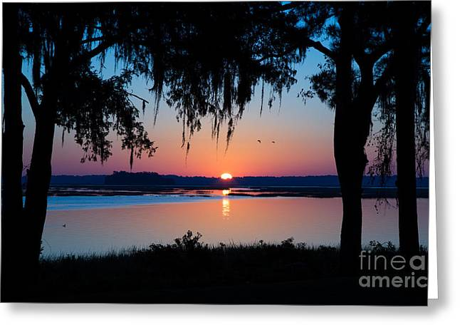 Reflections In River Greeting Cards - Palmetto Bluff Sunrise Greeting Card by Andy Miller
