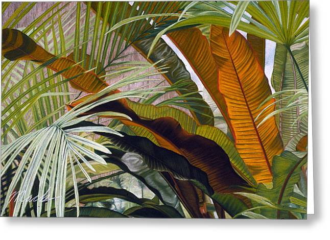 Palms At Fairchild Gardens Greeting Card by Stephen Mack