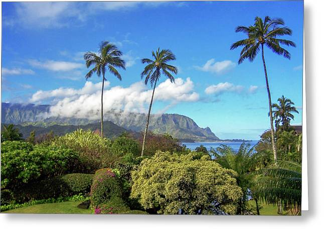 Lush Vegetation Greeting Cards - Palms at Hanalei Greeting Card by James Eddy