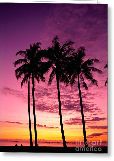Ocean Art Photos Greeting Cards - Palms At Sunset Greeting Card by Mary Van de Ven - Printscapes