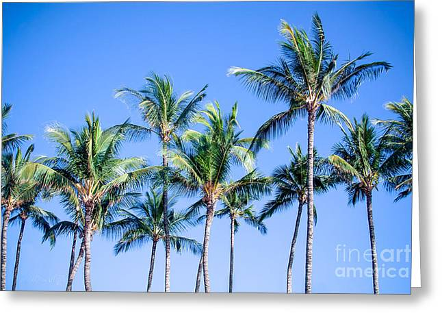 Fruit Tree Art Greeting Cards - Palms in Living Harmony Greeting Card by Sharon Mau