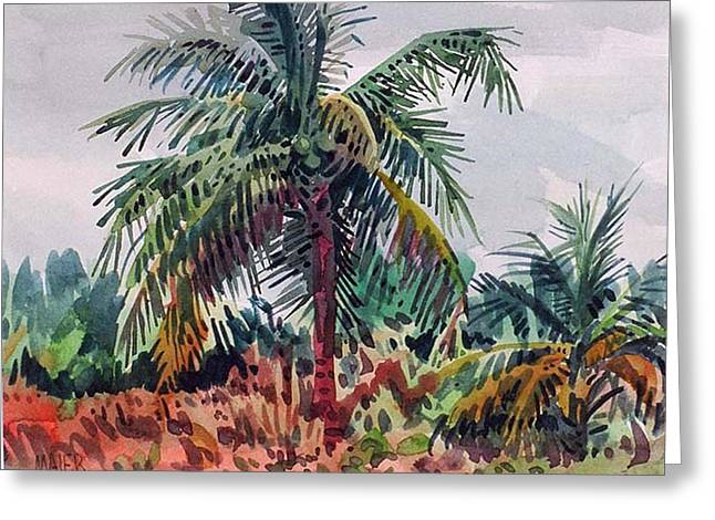 Coconut Greeting Cards - Palms on Big Pine Key Greeting Card by Donald Maier