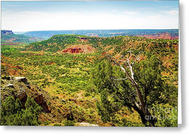 Palo Duro Canyon Greeting Card by Jon Burch Photography