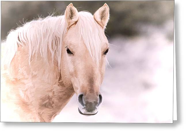 Vale Greeting Cards - Palomino In The Snow Greeting Card by Athena Mckinzie