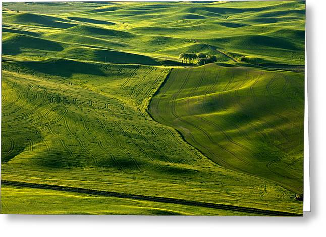 Crop Greeting Cards - Palouse Patterns Greeting Card by Mike  Dawson