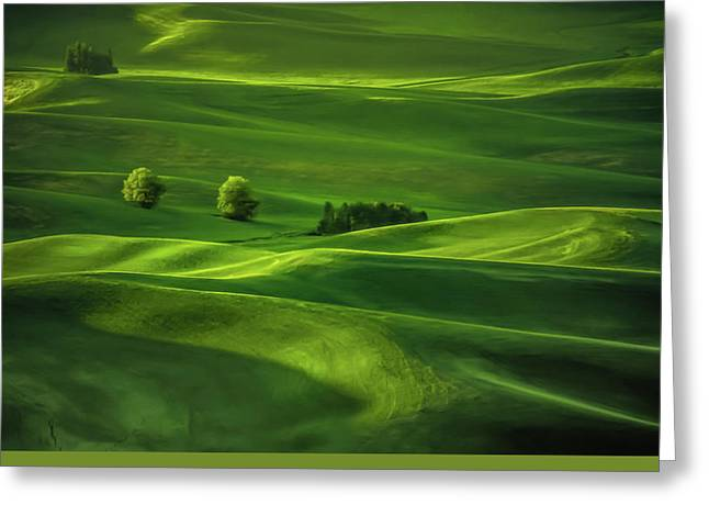 Palouse Waves Greeting Card by Don Schwartz