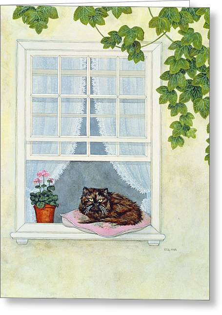 Cushion Greeting Cards - Pams Cat  Greeting Card by Ditz