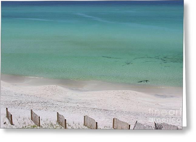 Panama City Beach 2016 Greeting Card by Karen Adams
